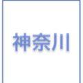 箱根駅伝2019x神奈川大の区間オーダー予想とレース展望と結果&注目エントリー選手!エースの山藤x越川x多和田x井手と安田の戻りでシード復帰なるか?